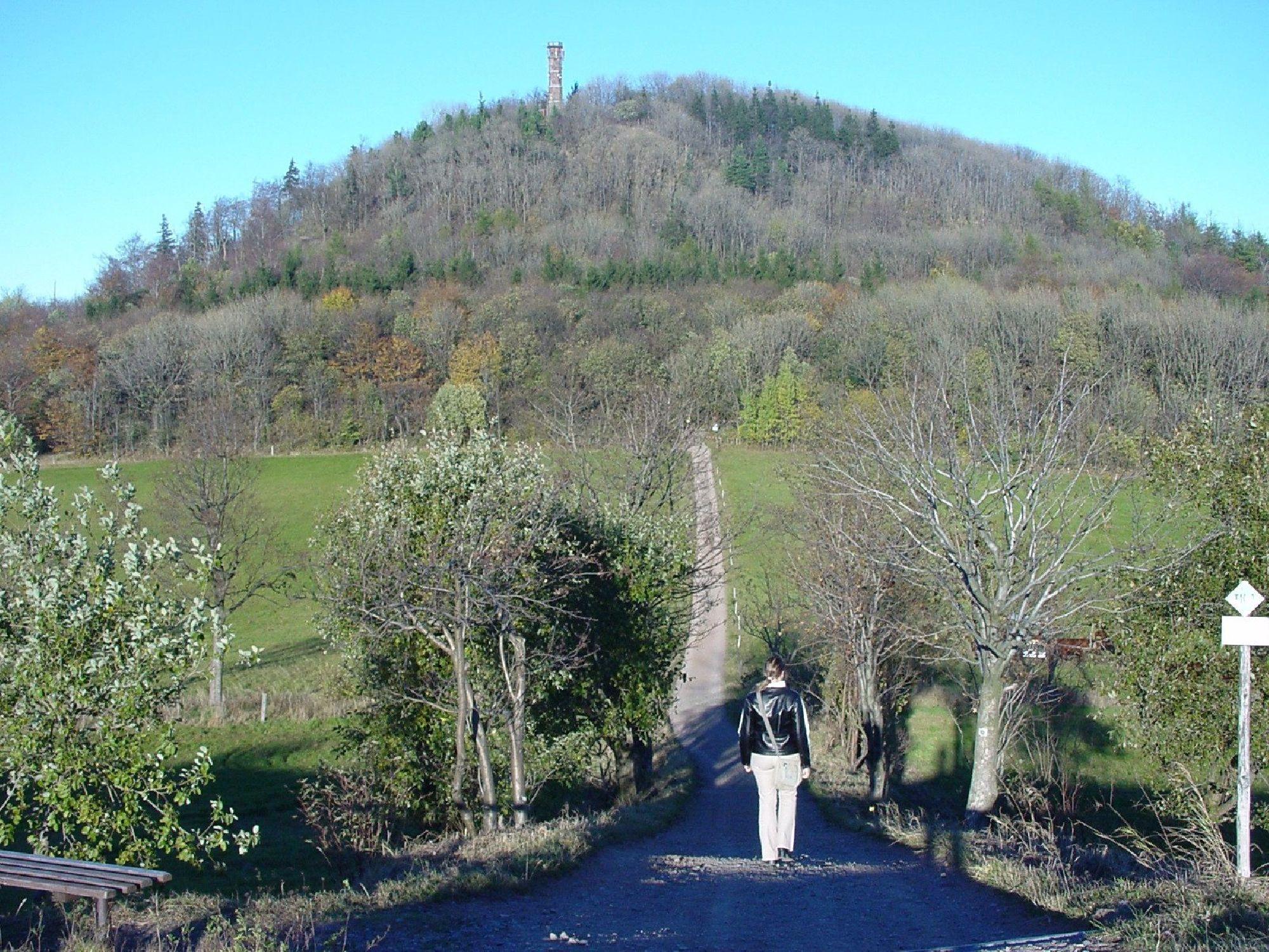 Der Weg zum Geisingberg