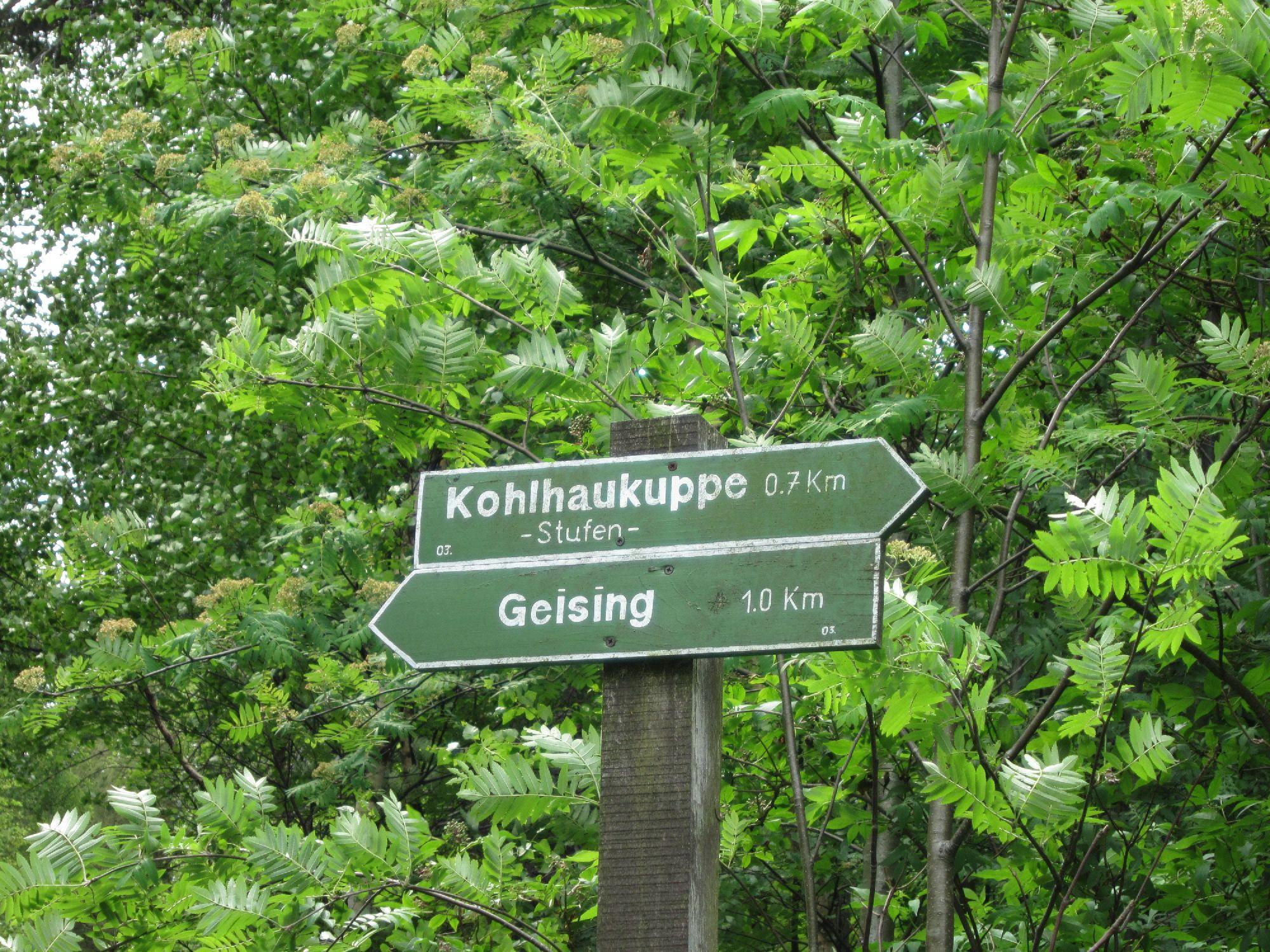 Wegweiser Kohlaukuppe/Geising