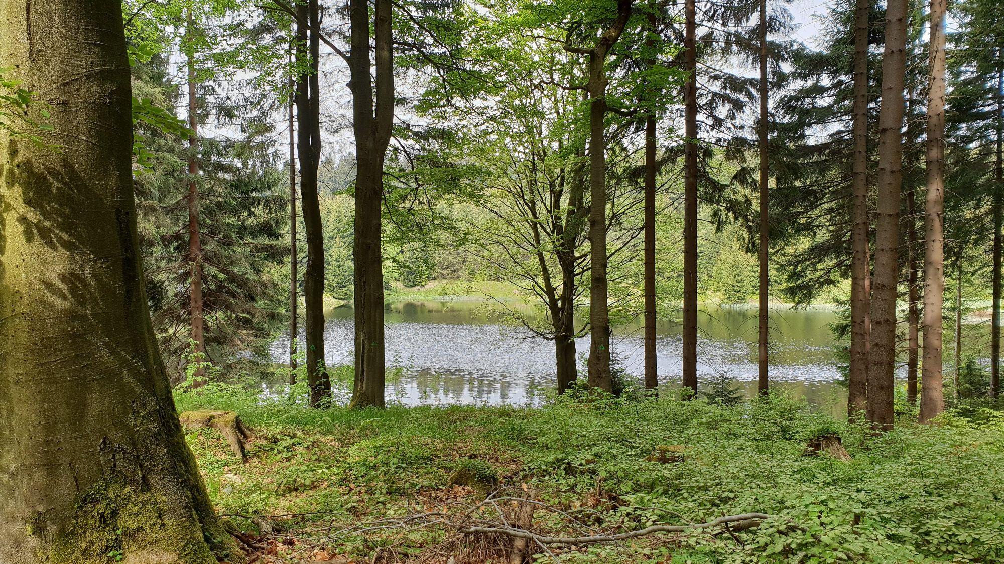 Ullersdorfer Teich