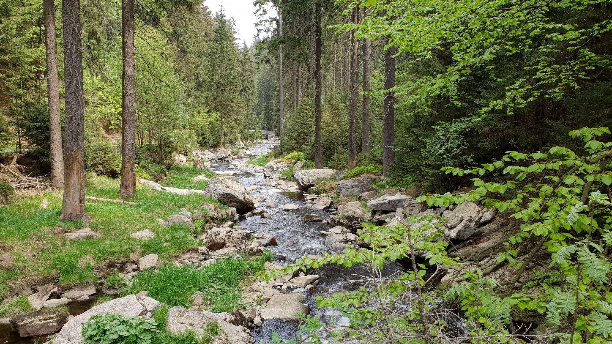 Schwarzwassertal - Schwarze Pockau