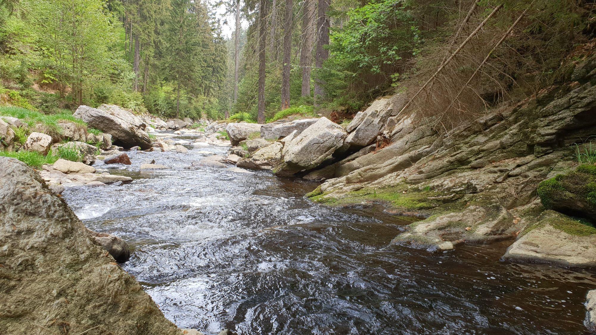 Fluss Schwarze Pockau