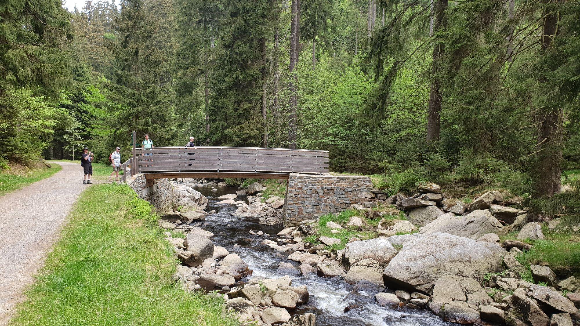 Holzbrücke im Schwarzwassertal