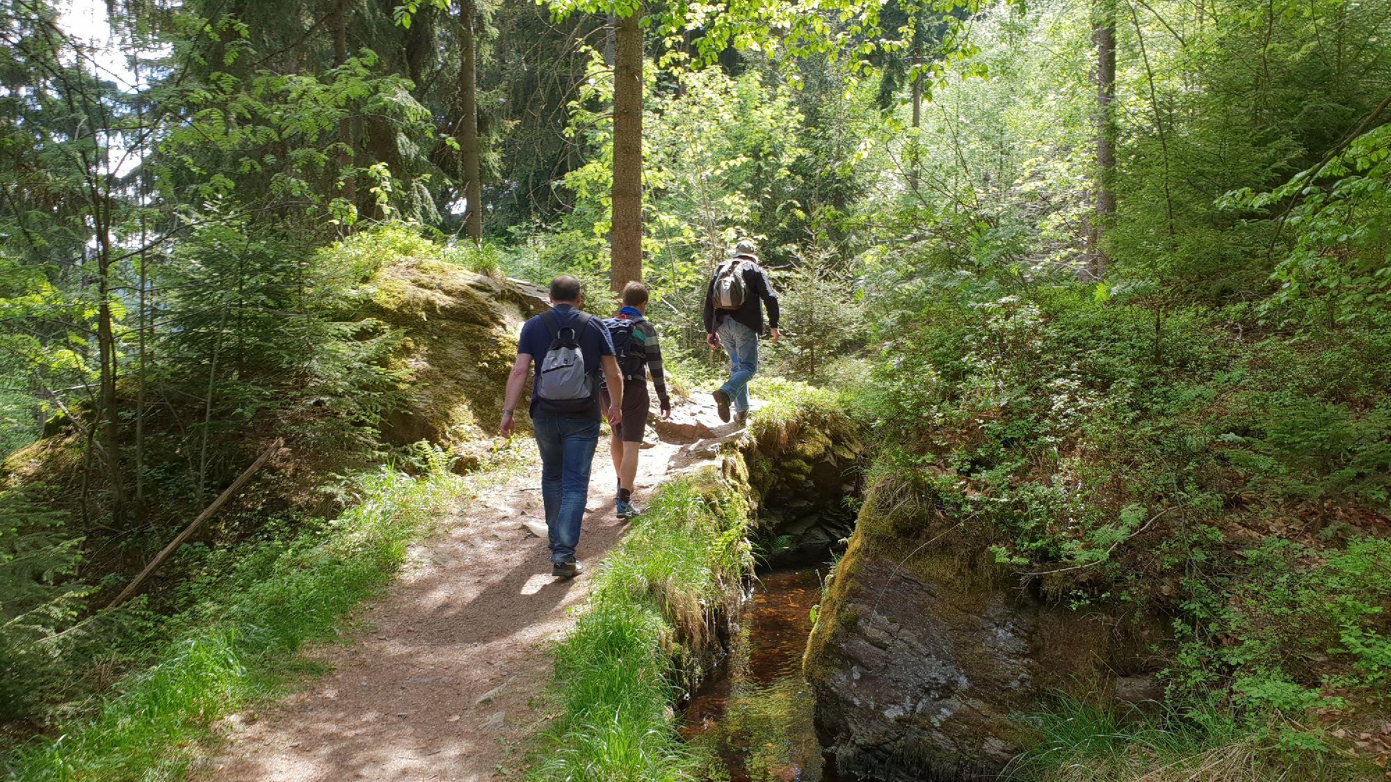 Wanderweg Grüner Graben